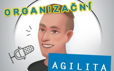 Organizační Agilita w Robert Fujdiar